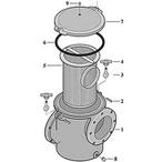 Sta-Rite CSP Pump Cast Iron Hair & Lint Pot Pump
