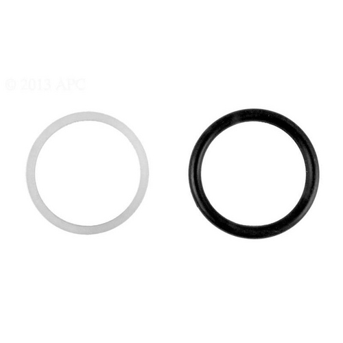 Hayward - O-Ring and Teflon Seal