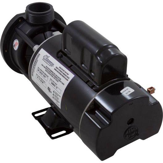 Center Discharge 48-Frame 1-1/2HP Dual-Speed Spa Pump, 115V