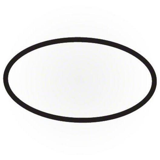 Waterway  Faceplate O-Ring