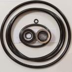 Sta-Rite Max-E-Pro Series Pump Seal Kit
