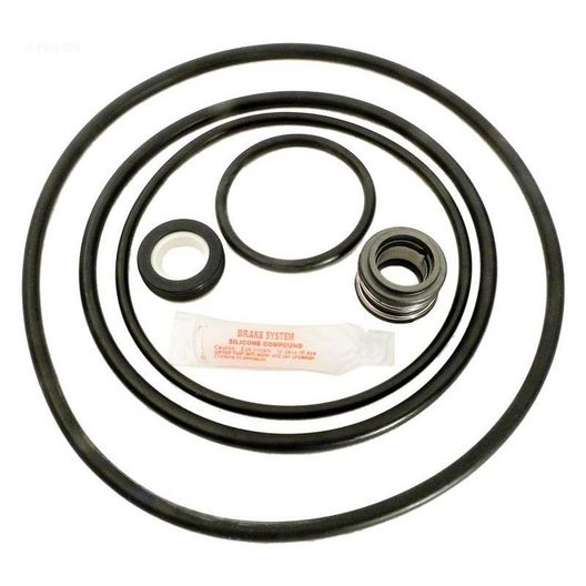 Sta-Rite DynaGlass and J-Series Pool Pump O-Ring Kit