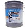 Aqua Seal Acrylic Pool Paint, 1 Gallon, White