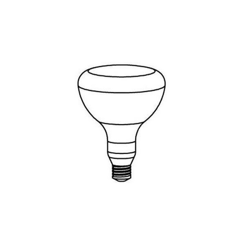 Pentair - Amerlite Replacement Bulb