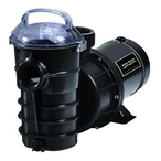 Dynamo 1-1/2 HP Dual Speed Above Ground Pool Pump with 3' Standard Cord, 115V