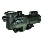 SuperMax Single Speed 1-1/2HP Pool Pump, 115V/230V