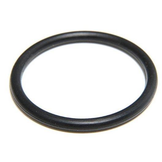 Aladdin Equipment Co - Hayward Star-Clear Lid Locking Knob O-Ring - 301249