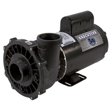 Waterway - Executive 56 3721621-1D 4HP 56 FR Dual-Speed Spa Pump 230V