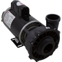 Executive 56-Frame 4HP Single-Speed Spa Pump, 2-1/2in. Intake, 2in. Discharge, 230V