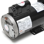 Waterway  Executive 56-Frame 5HP Dual-Speed Spa Pump 2-1/2in Intake 2in Discharge 230V