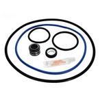 Epp  Hayward NorthStar 4000 Series Pool Pump O-Ring Kit
