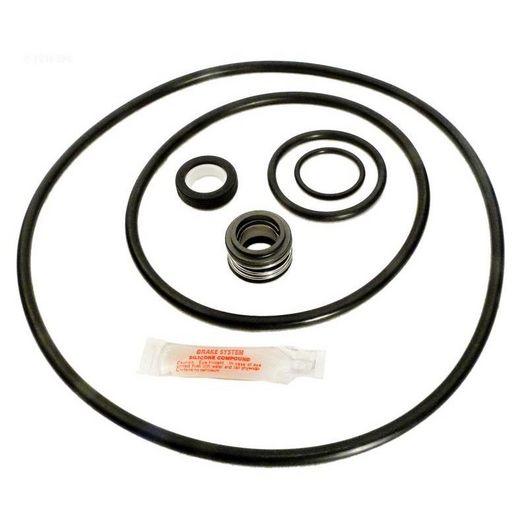 Epp - Sta-Rite P4E/P4EA DuraGlass II/Maxi-Glas II Pool Pump O-Ring Kit - 301990