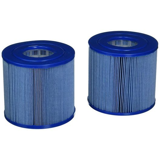 Filter Cartridge for Dynamic Series IV, Model DSF 35, Waterway (Antimicrobial)