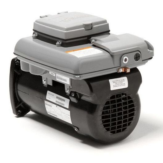 Century A.O. Smith - V-Green Square Flange 2.7HP Variable Speed 48Y Pool and Spa Pump Motor - 304338