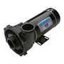 Executive 48-Frame 1HP Dual-Speed Spa Pump, 2in. Intake, 2in. Discharge, 115V
