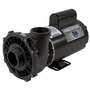 Executive 56-Frame 4HP Single-Speed Spa Pump, 2in. Intake, 2in. Discharge, 230V