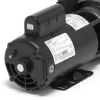 Executive 56 - 3712021-1D - 5HP Single-Speed 56 FR Spa Pump 230V