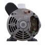 FMCP Pump, 1-1/2 HP, 2-Speed, 115 Volts