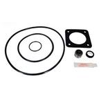 Epp - Sta-Rite P2RA/P2R DuraGlas/Maxi-Glas Pool Pump O-Ring Kit (1998 to Present) - 305434