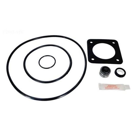 Sta-Rite P2RA/P2R DuraGlas/Maxi-Glas Pool Pump O-Ring Kit (1998 to Present)