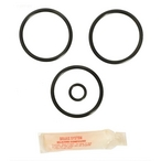 Anthony 2in. Brass Slide Valve O-Ring Kit