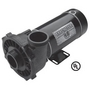 Executive 48 Frame 1-1/2HP Single Speed 2-1/2in. Intake 2in. Discharge 115V Spa Pump