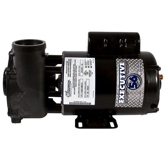 Waterway  Executive 56-Frame 3HP Single-Speed Spa Pump 2in Intake 2in Discharge 230V