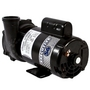 Executive 56-Frame 3HP Single-Speed Spa Pump, 2in. Intake, 2in. Discharge, 230V
