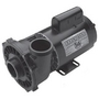 Executive 56-Frame 3HP Single-Speed Spa Pump, 2-1/2in. Intake, 2in. Discharge, 230V