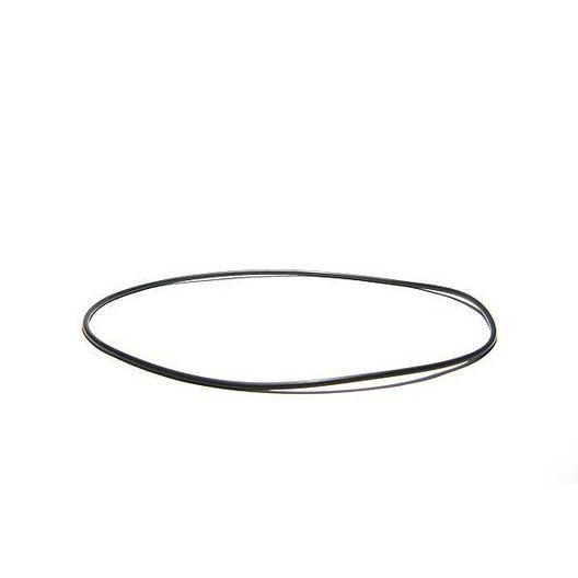 Volute O-Ring for Aqua-Flo Flo-Master HP and Circ-Master CP Series Pumps