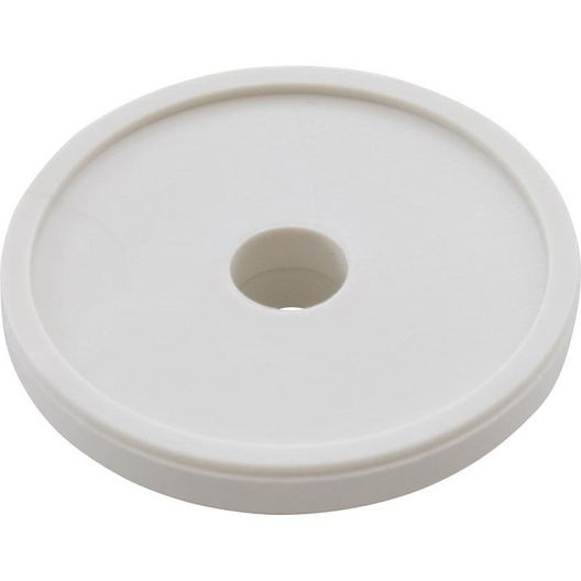 Pentair  Bypass Disc