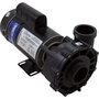 EX 2 48-Frame 2-1/2HP Single-Speed Spa Pump, 2in. Intake, 2in. Discharge, 230V