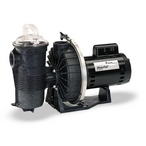 340302 AF-180 WaterFall Specialty Pump without Strainer 180GPM, 115V/230V