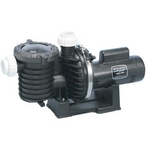 Max-E-Pro Single Speed Full Rated Three Phase 3/4HP Pool Pump, 200V-400V