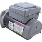 Century A.O Smith  Premium Square Flange 3/4 or 0.10 HP Dual Speed Pool and Spa Motor 115V
