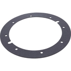Gasket V/L Main Drain Assembly