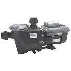 Econo-Flo VSA Variable Speed Pool Pump, 230V