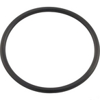 Pentair - Union O-Ring for Clean & Clear - 323181