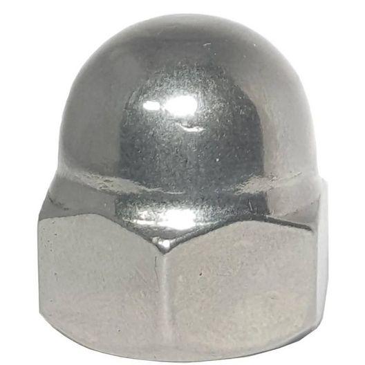 Pentair  1/4-20 SS Acorn Nut for UltraTemp