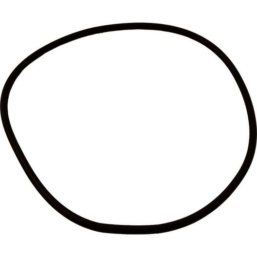 Sta-Rite  Seal Plate O-Ring
