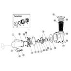 Waterway SMF Pump - 3264f15b-1fd0-44d8-8aaf-c13ae6d6164c