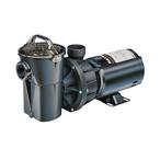 W3SP1775 PowerFlo II 3/4 HP Above-Ground Pool Pump, 115V