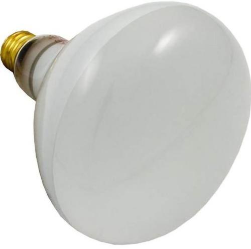 Sta-Rite - 500W 120V Reflector Flood bulb, screw-in