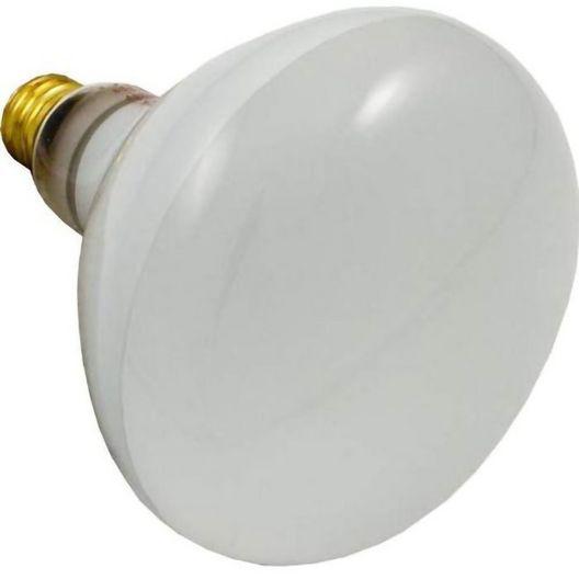 Sta-Rite  500W 120V Reflector Flood bulb screw-in
