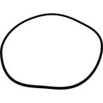 O-Ring, Filter Body
