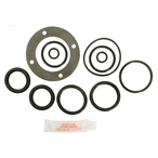 O-Ring kit for American 2 inch Slide Valve