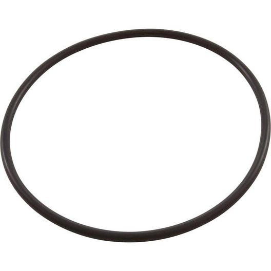 Pentair  Replacement O-ring skimmer bottom