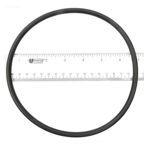 Epp - O-Ring, lid (b)
