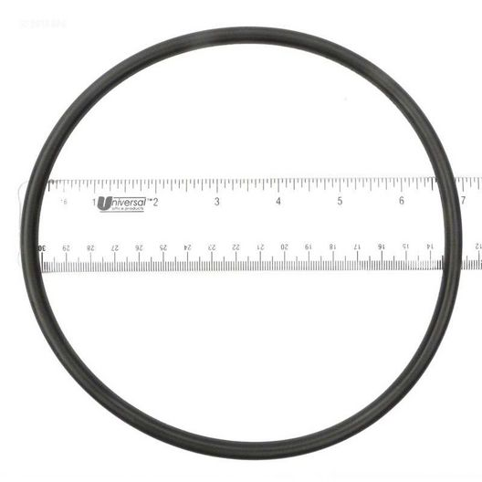 Epp  O-Ring lid (b)
