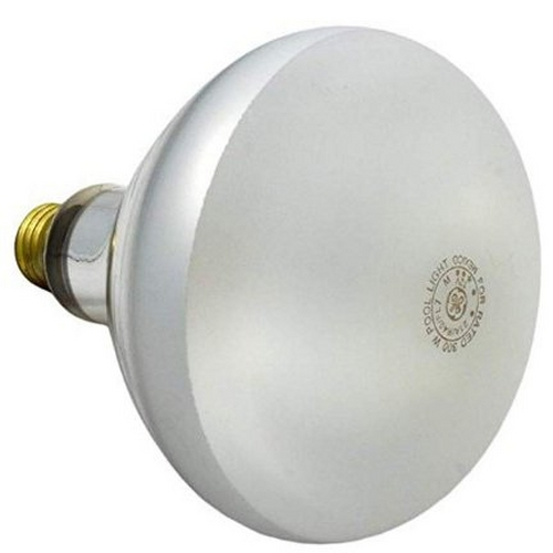 Pentair - Company Bulb - Flood 300W 12V